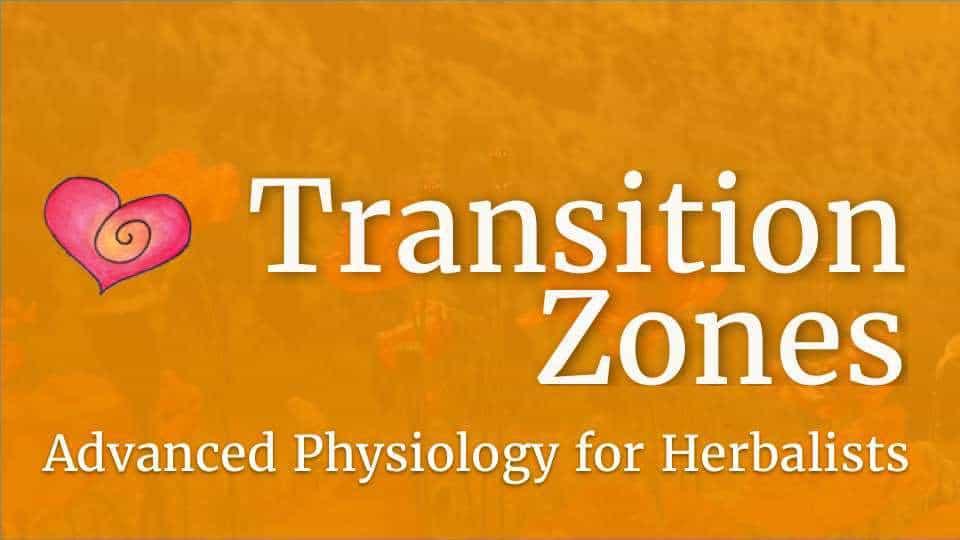 Course - TZ logo